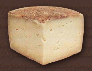 Brebis Pays Basque Cayolar