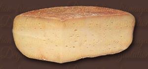 Brebis Pyrénées