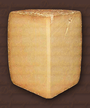 Cantal / Fourme Du Cantal