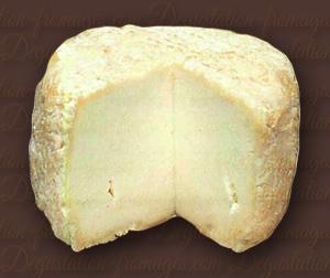 Fromage Au Lait De Chèvre / Chèvre De Pays